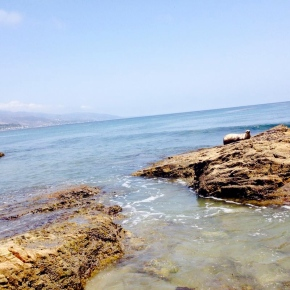 Beach Review: Malibu, California (ZumaBeach)