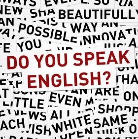 The Language Bias: English & The World